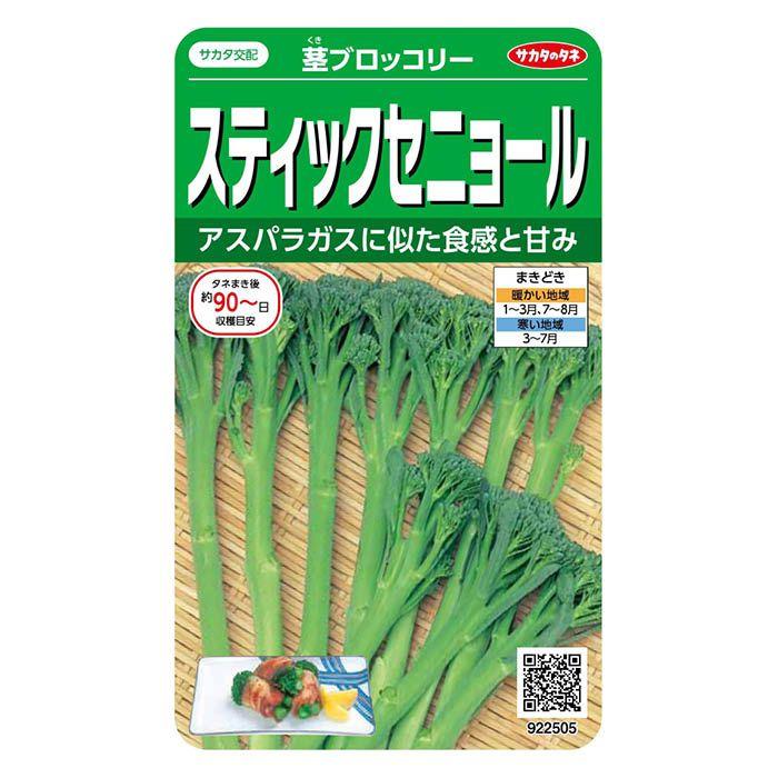 サカタのタネ スティックセニョール 茎ブロッコリー