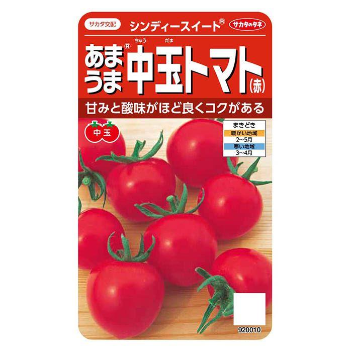 サカタのタネ あまうま中玉トマト(赤) シンディースイート