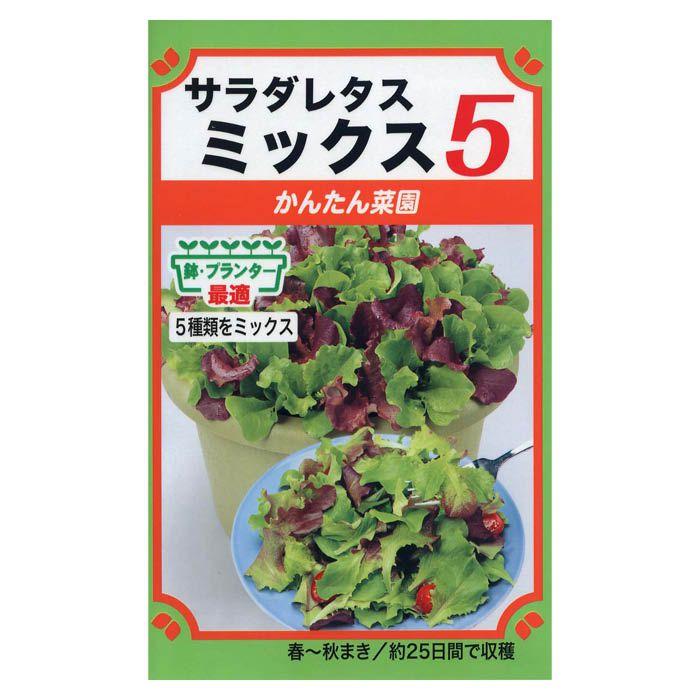 レタス サラダレタスミックス5